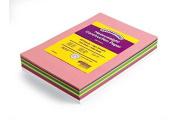Colorations 30cm x 46cm Construction Paper Smart Pack - 300 Sheets