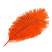 Wionya 10pcs Ostrich Feather Craft 36cm - 41cm (35-40) Plume for Wedding Centrepieces Home Decoration