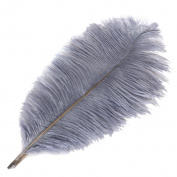 Wionya 5pcs Ostrich Feather Craft 41cm - 46cm (40-45) Plume for Wedding Centrepieces Home Decoration