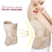 Tinsay Postpartum Support Recover Belly/waist/pelvis Belt Sharper for Women - 3 in 1