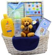 Nikki's New Arrival Baby Boy Gift Basket