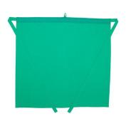 Ikea Apron, green