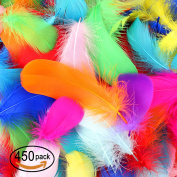 SOTOGO 450 Pcs Feathers Colourful Feathers Crafts For DIY Craft Wedding Home Party Decorations, 10 Colours