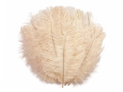 Ostrich Feathers, 100 Pieces - 15cm - 20cm Champagne Wholesale Ostrich Body Drabs Feathers