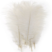10PCS Fluffy Ostrich Feathers Arts Crafts 25cm - 30cm Long White