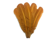 Turkey Feathers | 0.1kg - Light Brown Turkey Rounds Wing Quill Wholesale Feathers (Bulk) Fletching, Costume, Mardi Gras Feathers.