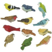 Miniature Birds