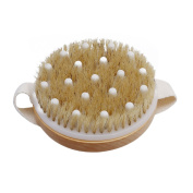 Myhouse Dry Skin Body Brush Natural Bristle Brush Clear Dead Skin Cells Stimulates Blood Circulation