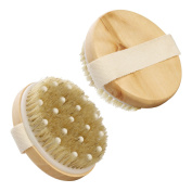 Dry / Wet Body Brush with Massage Nodules - Natural Bristle for Better Exfoliation - Clear Dead Skin Cells While Reducing Cellulite & Toxins