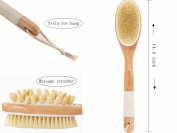 Pinkzio Natural Boar Bristle Long Handle Body Brush For Dry Skin Brushing, Remove Dead Skin And Toxins, Scrub And Exfoliation Shower Brush Massage Scrubber. Dry Skin Body Brush, 37cm x 6.9cm