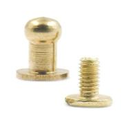 Fujiyuan 10 pcs Head Button Brass Stud Screwback Screws Back Spots for Leather Rivet Craft Boxes Bags 5mm