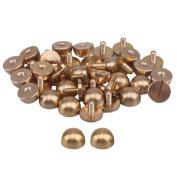 20pcs Solid Brass Screwback Studs Screw Back Feet Nailhead Semi-circle For Purse Handbag 10xM3x6mm