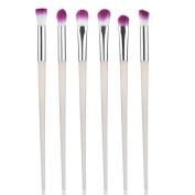 Allywit 6PCS Makeup Cosmetic Tool Eyeshadow Eye Contour Powder Foundation Blending Brush Set