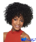 Eseewigs Short Kinky Curly Wig Real Human Hair Afro Curly Wigs Brown Colour Natural Looking For Women