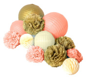 Paper Jazz 12pcs paper pom pom lantern honeycomb ball for wedding birthday baby shower graduation meeting event party decoration