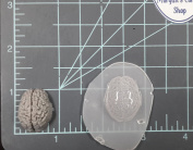 Human Brain (Small) Plastic Mould Resin Mould, brain Mould, clay mould, soap mould, wax mould, anatomy mould, human mould, bath bomb mould