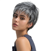 Mufly Elegant Mixed Colour Straight Short Hair Synthetic Wig Full Hair Wigs Realistic Wigs for Women 20cm 130% High Density for Daily Party