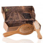Bamboo Brushes (Bamboo Set)