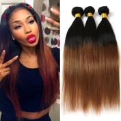 Ombre Brazilian Virgin Hair Straight Weft Mixed 3 Bundles Colour T1B/27 95-100g/pc Human Hair Extensions