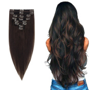 FIRSTLIKE 8CS 41cm Highlight Straight Full Head Clip in Hair Extensions 18 Clips Women Lady Human Hair