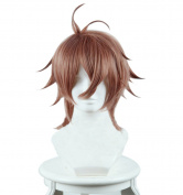 ROLECOS Sieg Cosplay Wigs Mens Japanese Anime Synthetic Party Wig Brown