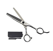 CHUN WILL 15cm Silver 440C Salon Hair Thinning Shears - Thinning Rate 10% for Professional Barber