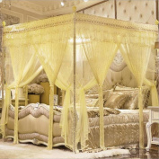 YL Palace Princess Wind Air Conditioning Encryption Thick Double Bed Nets Three Open Door Mosquito Nets , 1 , 180*200,1,180*200