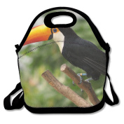 Ryskeco Toucan Pattern Portable Reusable Lunch Tote Bags For Women, Teens, Girls, Kids, Baby, Adults,Work, Office, School Or Gym