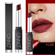 Vinjeely Square Lasting Waterproof Lip Soft Moisturising Lipstick Lip Gloss Makeup