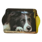 Country Matters Chilled Out Collie Trinket Tray
