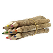 TropicaZona Branch and Twig Pencils, 13cm L, Assorted Colours, 10 Piece