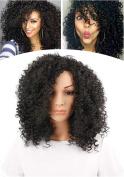 African American Shoulder Length Afro Little Curly Women Wig (Black) 009BK
