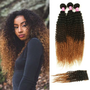Mink Hair Ombre Kinky Curly Hair with Closure (16 18 20 + 14) Grade 8A Brazilian Virgin Curly Hair Extensions with 4x4 Free Part Lace Closure 1B/4/27# Colour