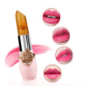 kaiCran Waterproof Long Lasting Moisturise Lipstick Lip Gloss