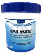 Earthbound Spa Mate with Eucalyptus & Peppermint / Pure Bulk Mineral Dead Sea Salts for Salt Water Spas, Whirlpools and Hot Tub Systems / Reusable Bucket with Handle / 2.3kg