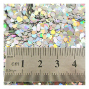 15g LARGE HOLOGRAPHIC GLITTER *4 SIZES *5 COLOURS * CRAFTS NAIL ART CARD MAKING (Silver 0.3cm