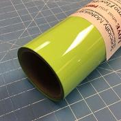 ThermoFlex Plus 38cm x 4.6m Roll Mint Green Heat Transfer Vinyl