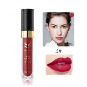 FANOUD Waterproof Matte liquid lipstick, Long Lasting lip gloss Lipstick for Women