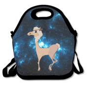 Cute Cartoon Alpaca Walking Large & Thick Insulated Tote Lunch Bags Set Lunch Bag For Men Women Kids Art Of Lunch