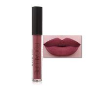 FANOUD New Fashion Women Cosmetics Lipstick Sexy Lips Matte Lip Gloss Party