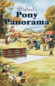 Pony Panorama