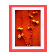 BOJIN Red 28cm x 36cm Wall Wood Picture Frames For Portrait or Landscape, Made To Show Picture A4 With Mat