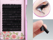 C Curl 0.15 thickness 8 to 12 mm Individual Eyelash Extension Lash Tray, Premium Silk Eyelash Extension Mixed Tray,C Curl 0.15 in assorted length 8mm to 12 mm Lash Extension Variety Pack