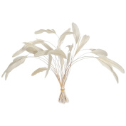Wionya 20pcs Cocktail Feather Craft 12-14inch(30-35cm) Plume for Wedding Centrepieces Home Decoration