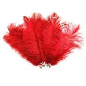 bargain house Red Ostrich Feather Home Decoration DIY Craft Pack of 10.