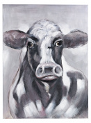 Friesian Oil On Canvas
