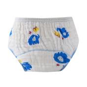 Sunward Baby New Design Reuseable Washable Pocket Cloth Nappy Nappy