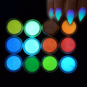 MEILINDS Fluorescence Pigment Ultrafine Glitter Glow Powder Nail Art Dust Luminous Decor Tip Beauty Tool 12 Colours