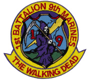 """1st Battalion 9th Marines """"The Walking Dead"""" Embroidered Patch 7.6cm x 7.6cm"""