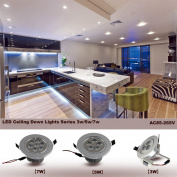 LED Ceiling Down Light Silver